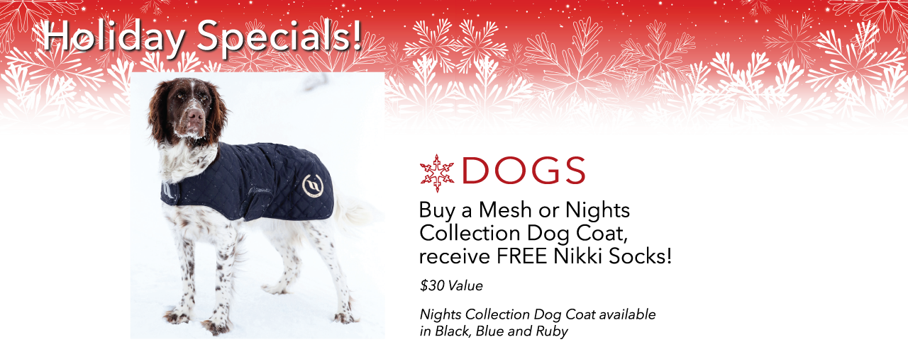 holiday specials for your dog