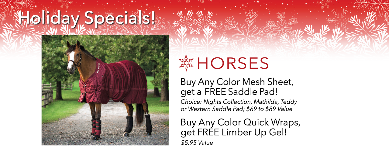 horse holiday special