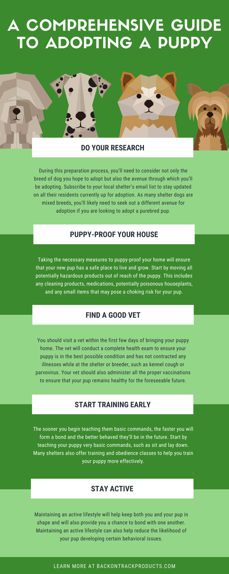 A Comprehensive Guide to Adopting a Puppy infographic